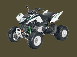 White Arctic Cat 300 DVX 2010 ATV Picture